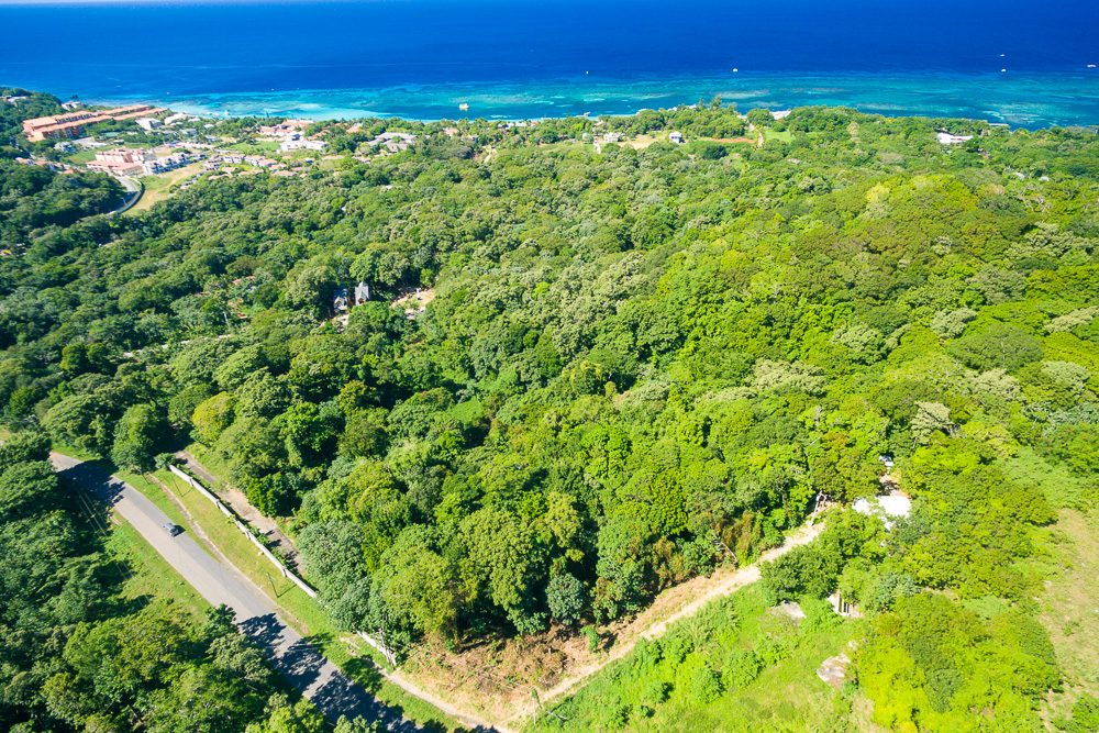 Roatan residential or Commercial lot